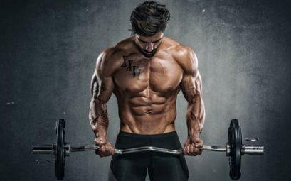 programme full-body débutant musculation