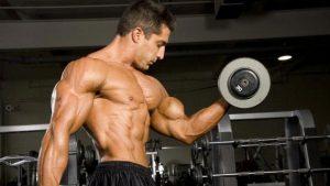 entrainement pyramidal en musculation